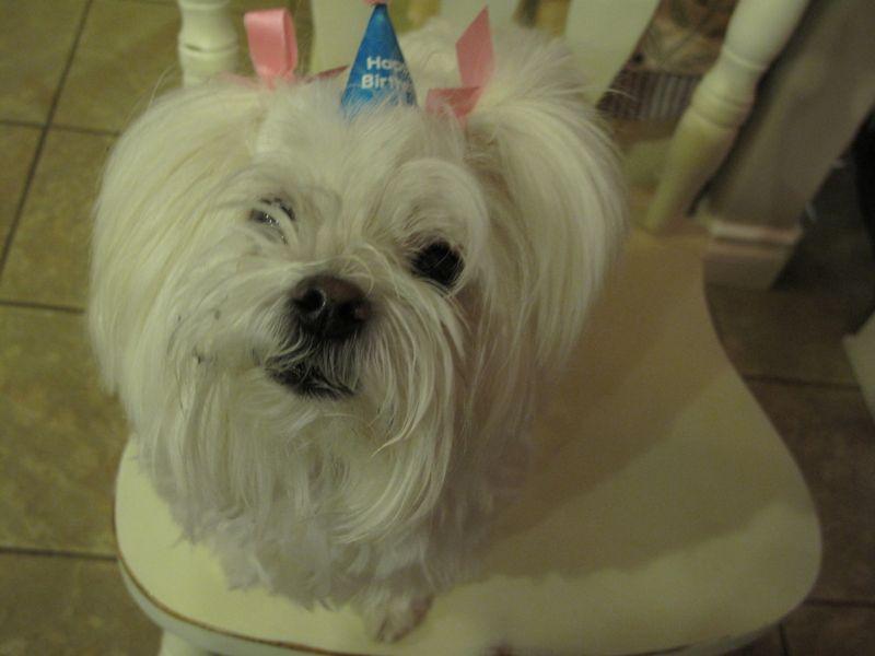 Birthdaymaggie
