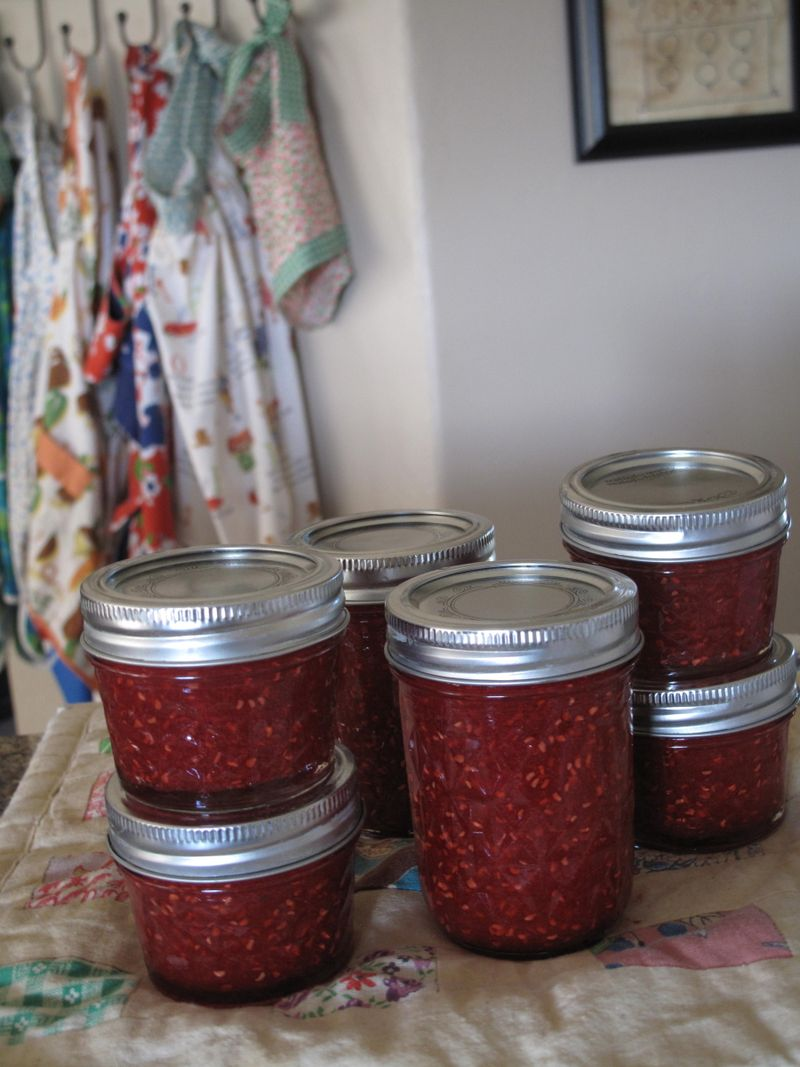 Raspberryjamday