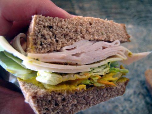 Turkeylovewich