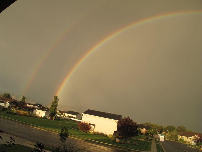Rainbowlalave