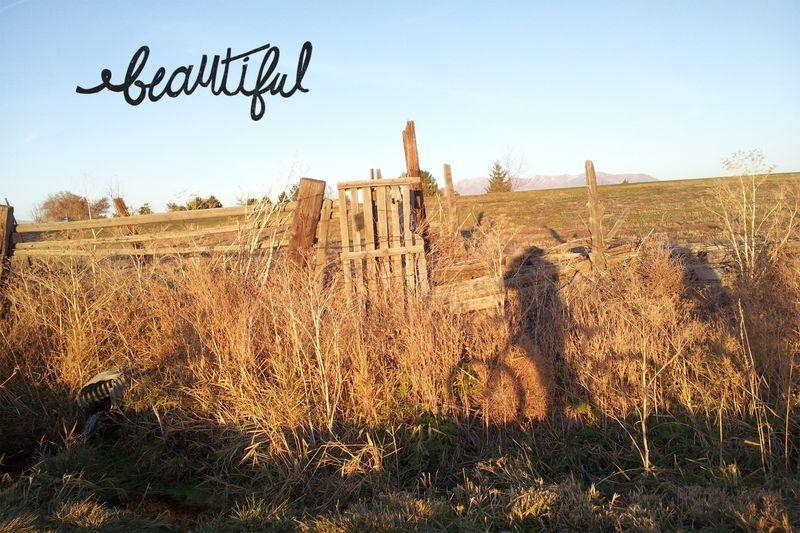 Beautifultrail